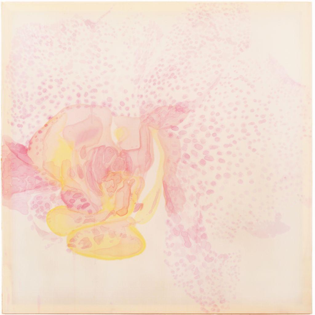 Tego kwiatu jest pół światu, jedwab malowany, 135 x 135 cm, 2016